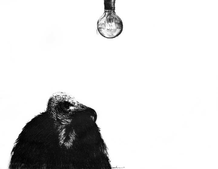 Art-Anthropology: R.E.M. (Contemporary Art) Frenzy, Real-Virtual Dystopia. REM (II) Distorsiones, Percepciones Alucinatorias y Disociación en la Fase REM del Sueño: Lo Real y lo Virtual. Una reflexión en torno a. Distopía y Futuro Post-Humano (Arte-Antropología). Arte Contemporáneo Cubano, Dibujo REM II