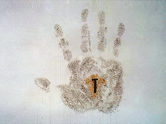 (Arte Efímero) Arte contemporáneo Nuevos Medios: arte cubano efímero