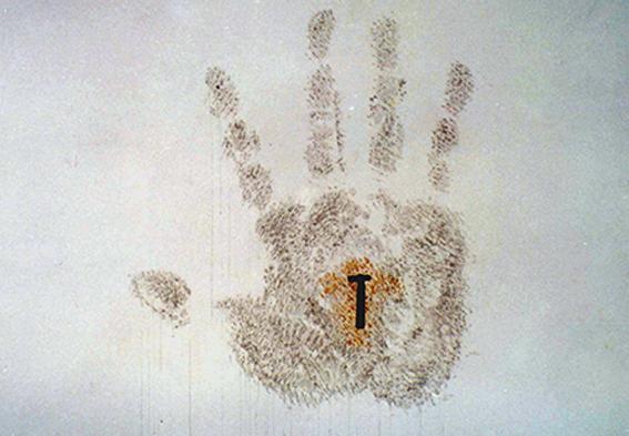 Arte Contemporáneo Arte Efimero Obra Efímera arte cubano